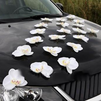 """Декор для авто """"Орхідеї"""""""
